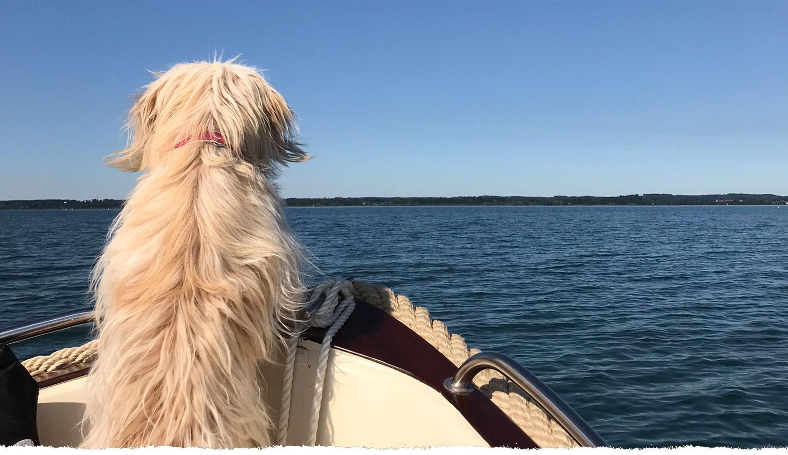 Mit Pia auf Bootstour am Chiemsee